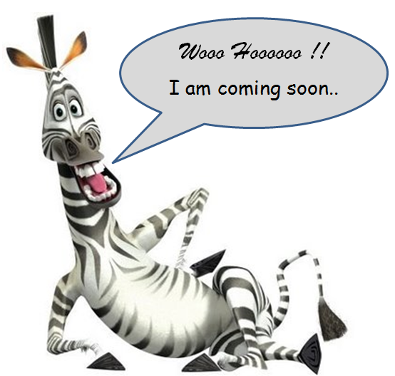 Google Zebra Update 2013